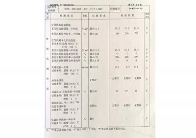 产品质量检验报告3