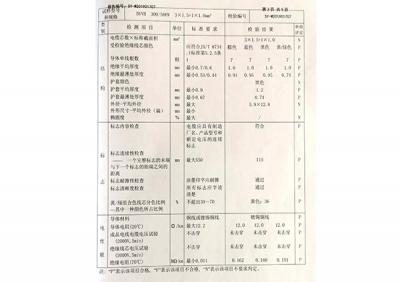 产品质量检验报告2